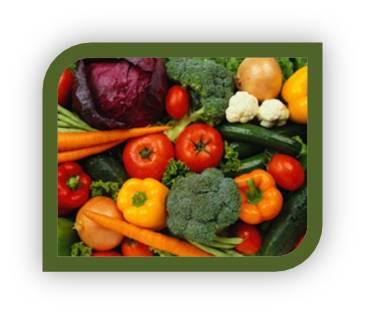 Sarasota Nutrition