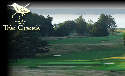 Creek with Logo